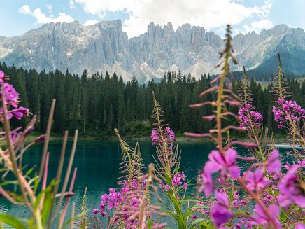 Latemar with Lake Carezza in the Dolomites