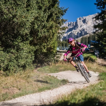 Carezza Trail downhill one Mountainbiker