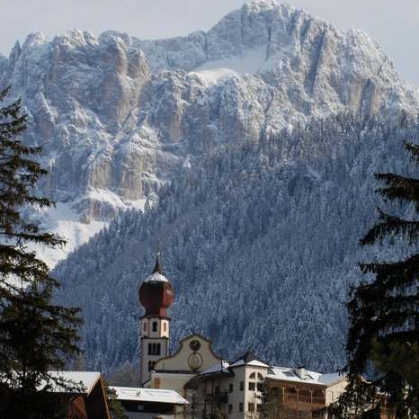 Tiers in the winter with church Catinaccio