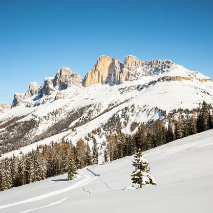 Snow landscape Carezza