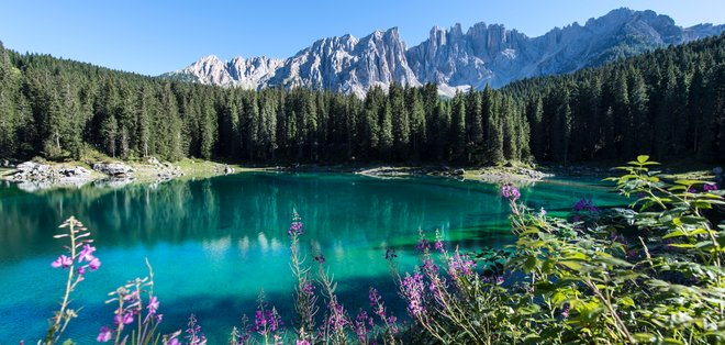 Lake Carezza - alpine Lake in the Dolomites